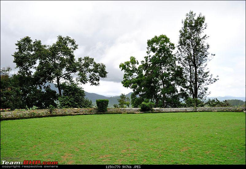 Valparai - The green carpet with great flora & fauna-valparai420.jpg