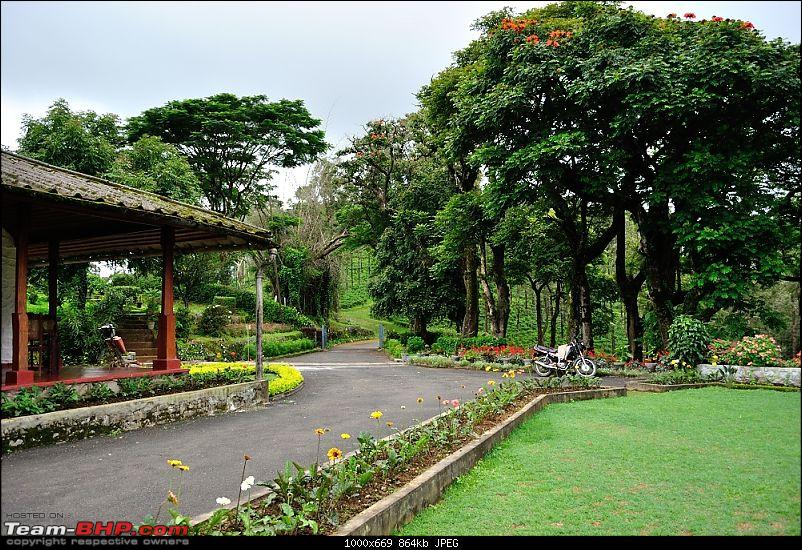 Valparai - The green carpet with great flora & fauna-valparai422.jpg