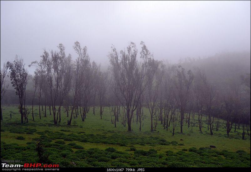 Fauji's Drivologues - Monsoon drive in Malnad!-dsc_1885-2.jpg