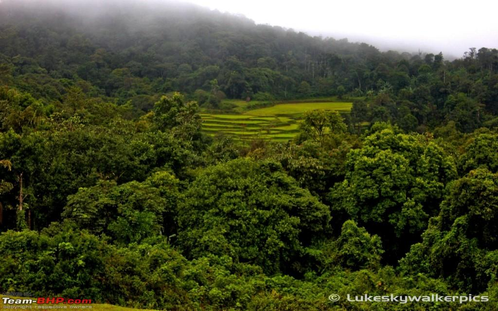 Sakleshpur - Been there yet ? (A drive in the rains ...