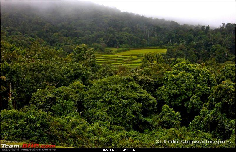 Sakleshpur - Been there yet ? (A drive in the rains)-scenery.jpg