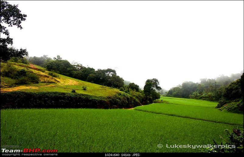 Sakleshpur - Been there yet ? (A drive in the rains)-30.jpg