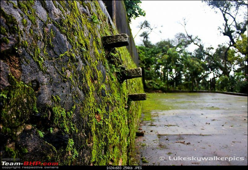 Sakleshpur - Been there yet ? (A drive in the rains)-42.jpg