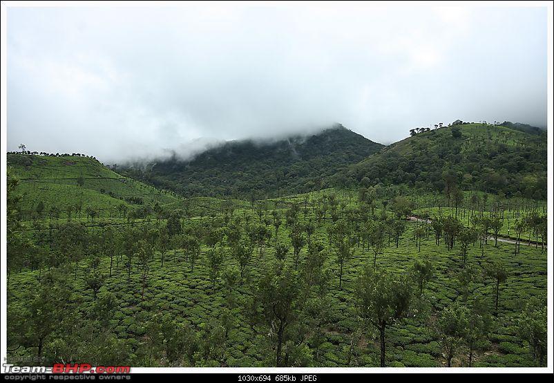 Stunning Valparai-img_0432a-web.jpg