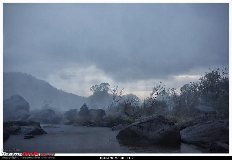 Stunning Valparai-img_0639a-web.jpg