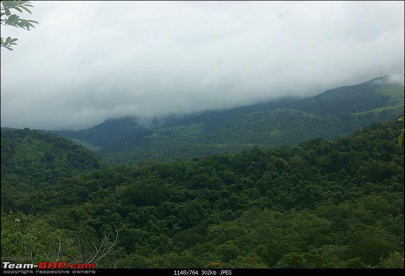 Photoblog of destinations in & around Trivandrum, Kerala-dsc04776.jpg