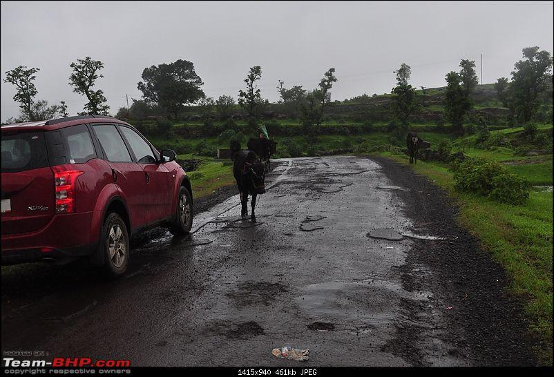 An unplanned long-weekend trip to Bhandardara-Igatpuri-dsc_1408.jpg