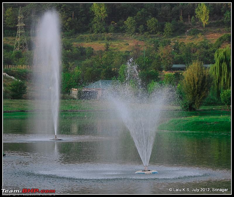 Name:  DSC_9979.jpg