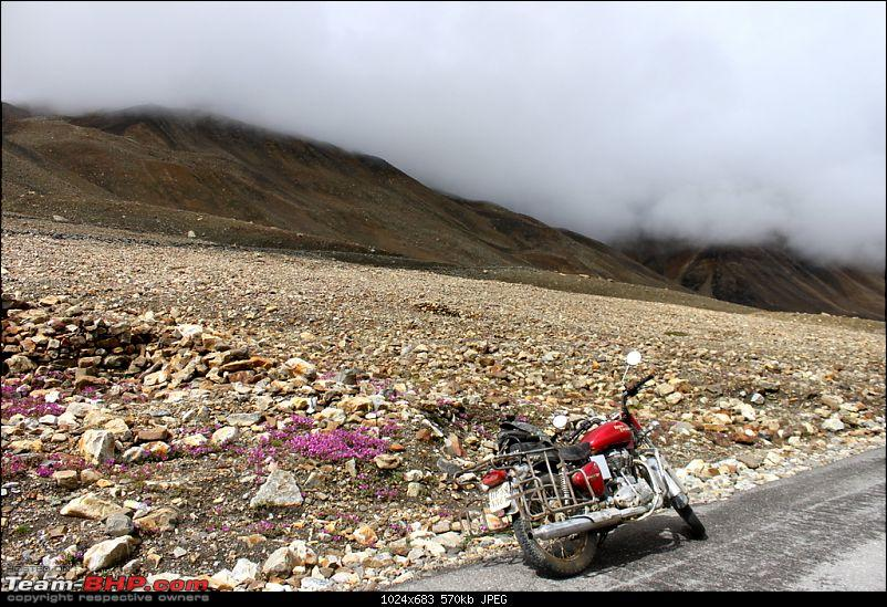 Yet another road trip - Motorcycling in Ladakh!-1img_6710.jpg