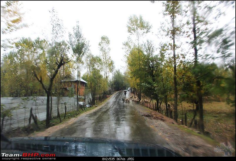 "Self-Drive Exploratory Expedition->Zanskar+Unknown Kashmir-> ""off-season October 2011-img_0071.jpg"