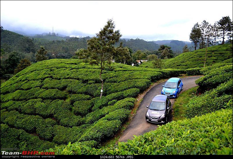 In a Honda Brio : Kochi - Munnar - Thiruvananthapuram-dsc_0169.jpg