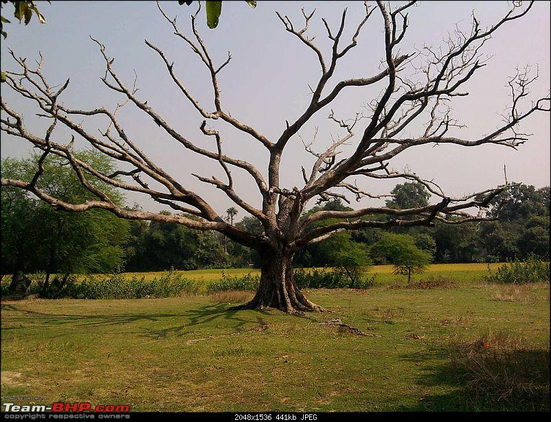 Getaways in and around Bhubaneswar, Orissa-image010.jpg
