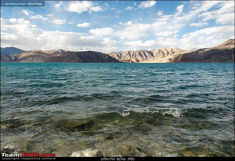 Ladakh in my Laura- Travelogue-dsc_8392.jpg
