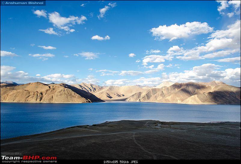 Ladakh in my Laura- Travelogue-dsc_8407.jpg