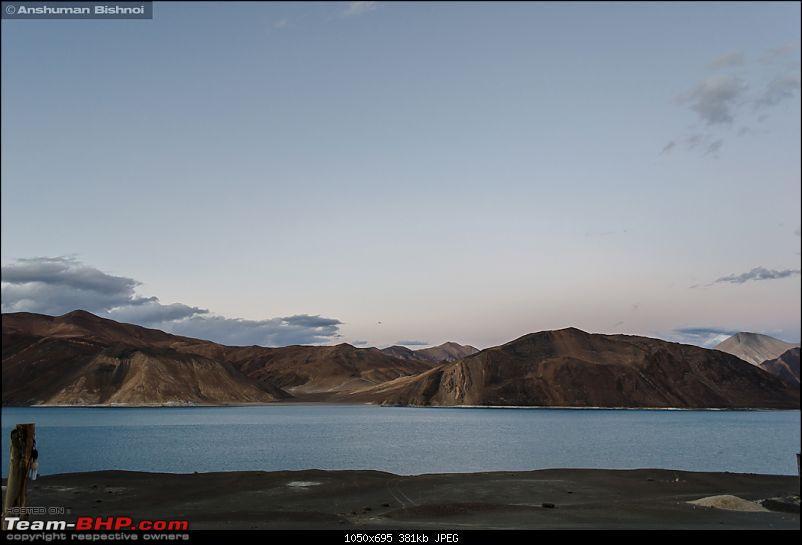Ladakh in my Laura- Travelogue-dsc_8422.jpg