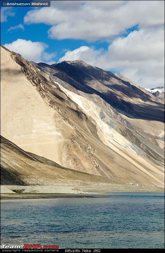 Ladakh in my Laura- Travelogue-dsc_8541.jpg