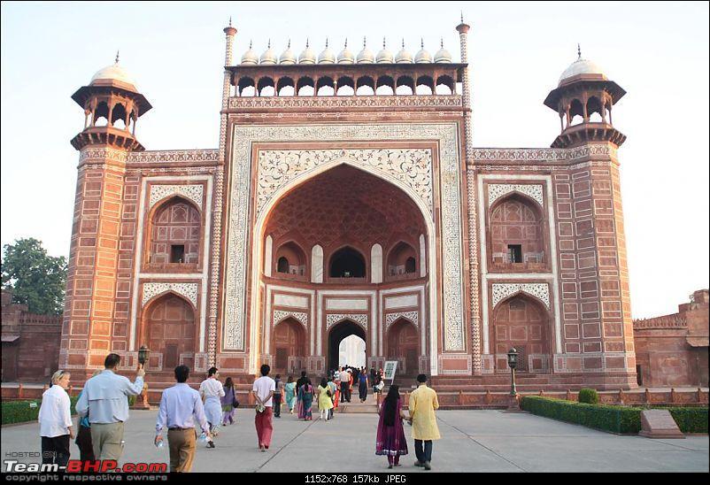 Taj Mahal @ Full Moon, Fatehpur Sikri, Mathura, Bharatpur & Keoladeo National Park-img_7724.jpg