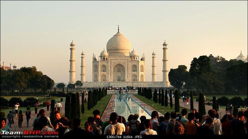 Taj Mahal @ Full Moon, Fatehpur Sikri, Mathura, Bharatpur & Keoladeo National Park-img_7735.jpg