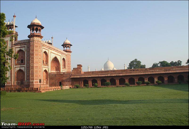 Taj Mahal @ Full Moon, Fatehpur Sikri, Mathura, Bharatpur & Keoladeo National Park-img_7832.jpg
