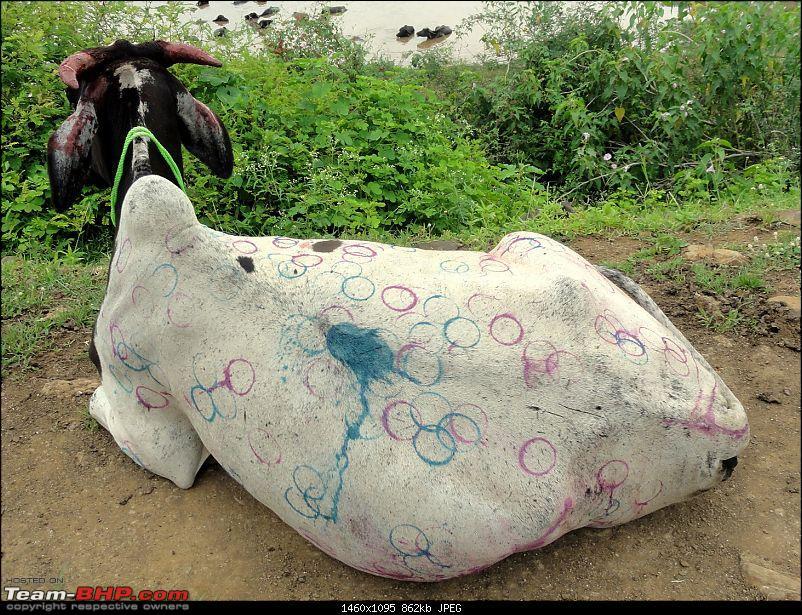 Black Buck Resort: A weekend Getaway from Hyderabad-dsc03450.jpg