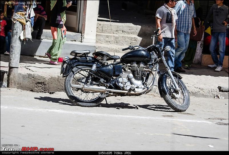 Ladakh in my Laura- Travelogue-dsc_8646.jpg