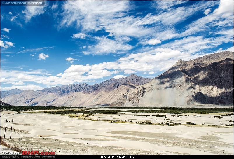 Ladakh in my Laura- Travelogue-dsc_8833.jpg