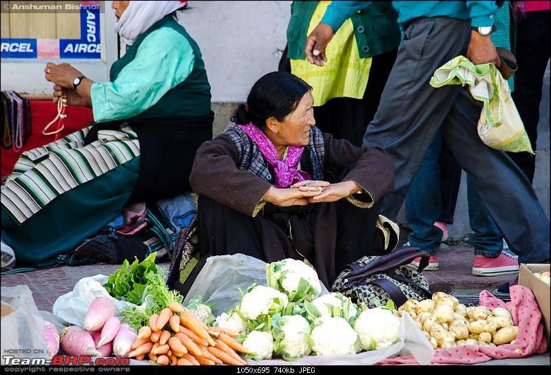 Ladakh in my Laura- Travelogue-dsc_8885.jpg