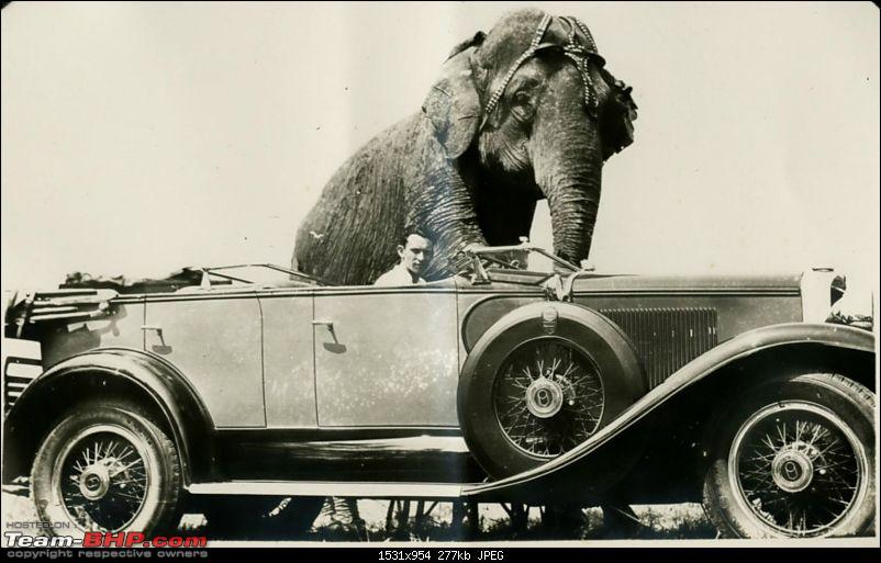 Nostalgic automotive pictures including our family's cars-mardo-elephant-car.jpg