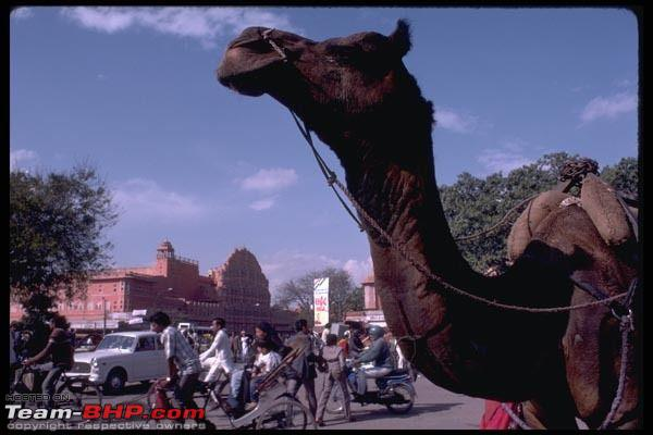 Name:  jaipur.jpg
