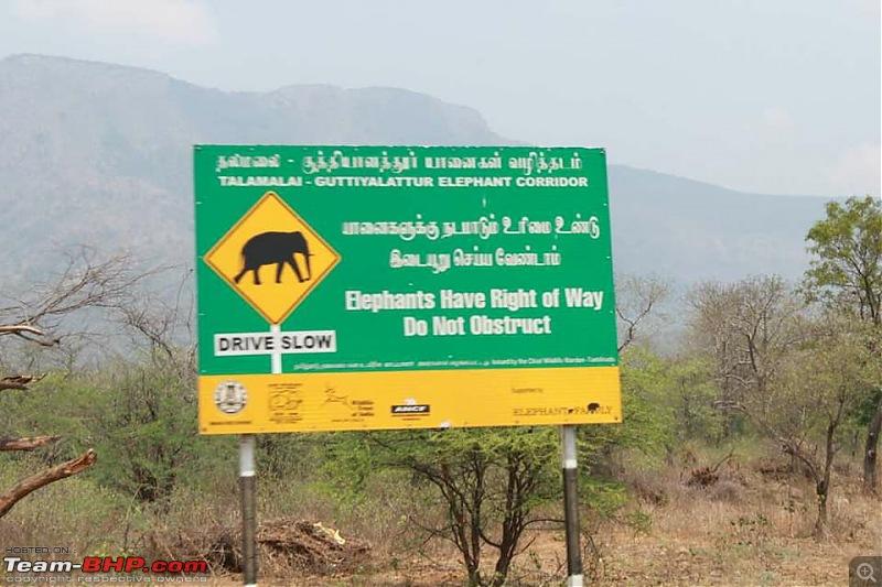 Summer Drive: 7 Fiat Millecentos visit Mysore-45.jpg