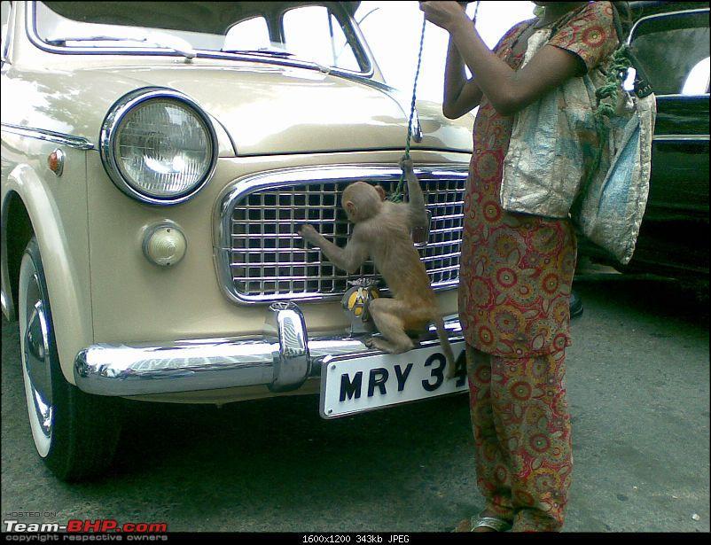 Fiat Classic Car Club - Mumbai-image4159.jpg