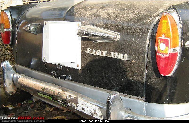 Fiat Classic Car Club - Mumbai-bootlid.jpg