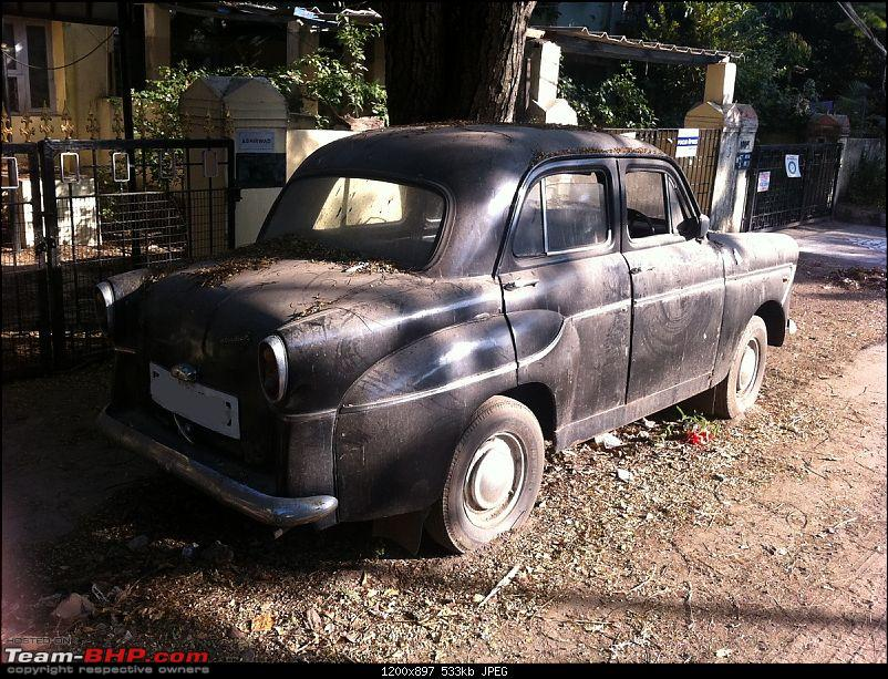 Standard cars in India-photo7.jpg